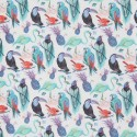 Birds of Paradise B