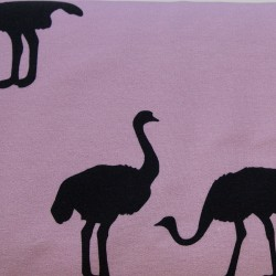 French Terry print Ostrich