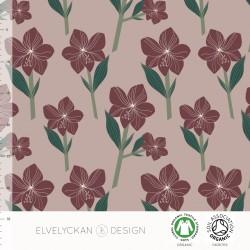 Jersey print Amaryllis rose( 030)