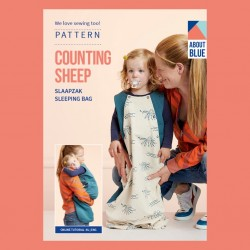 Counting sleep