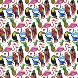 Birds of Paradise A